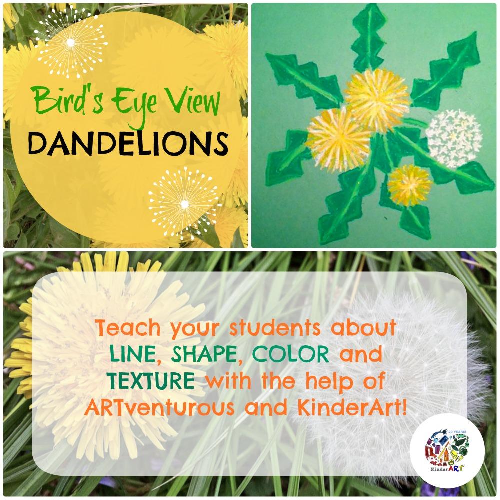 Bird's Eye View Dandelions