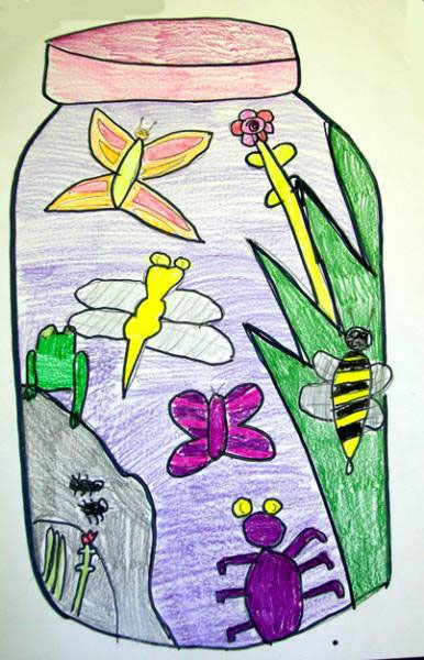 Bug Jars drawing lesson for kids