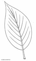 Coloring Page Leaf Pattern Coloring Pages
