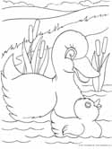 Farm And Baby Animals Coloring Pages