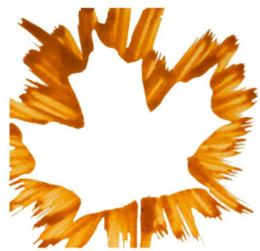 Leaf stencils. KinderArt.com.