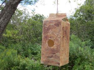 Milk carton birdhouse craft