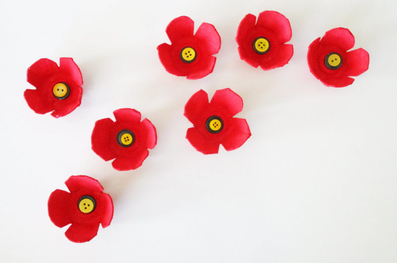 Egg carton poppy craft.