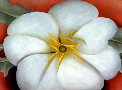 Georgia O'Keeffee Flower