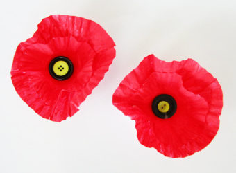 Muffin liner poppy craft.