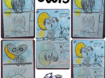 Owl Reflections Drawing Lesson for Kids