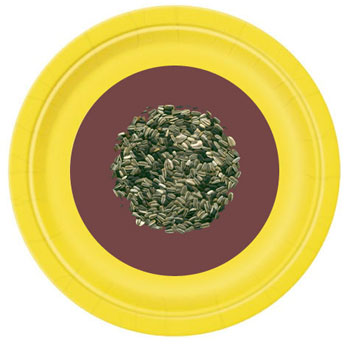 Paper plate sunflowers