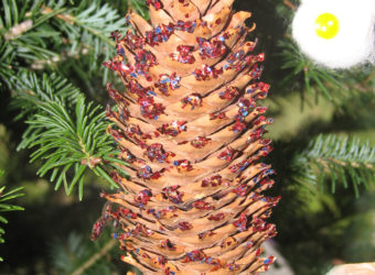 Pinecone Ornament Craft for Kids. KinderArt.com