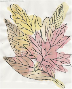 Natural Plant Dyes