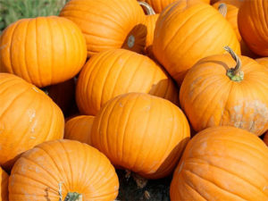 100 Things to do with a pumpkin. KinderArt.com