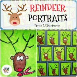Reindeer Portraits