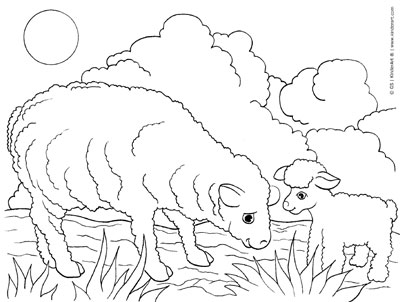 Sheep And Lamb Coloring Page KinderArt