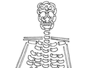 Spaghetti Skeleton Craft. KinderArt.com