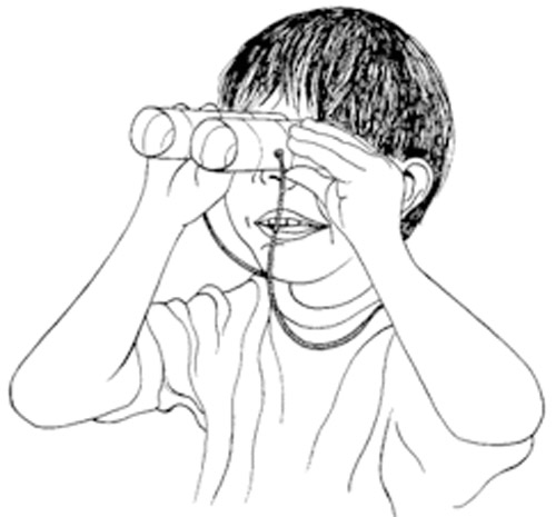 Paper roll binoculars for kids